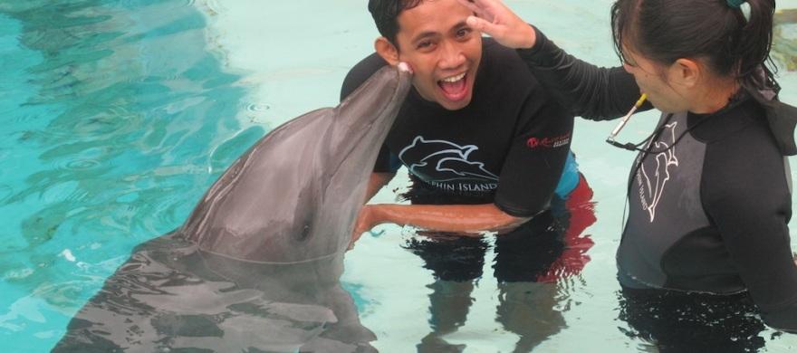 Dolphin's Kiss