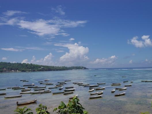 Seaweed Farm