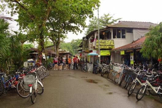 Pualu Ubin