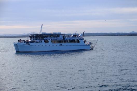 Moonshadow Cruise