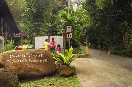 Bukit Timah Nature Reserve, Singapura