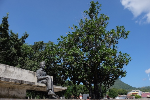 Bung Karno dan Pohon Sukun
