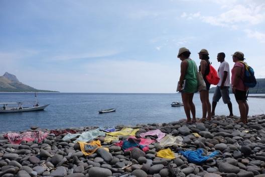 Pulau Mulas