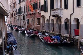 Honeymoon in Venice