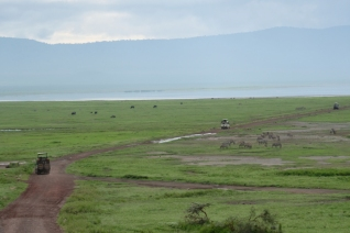 Safari Ngorongoro Crater