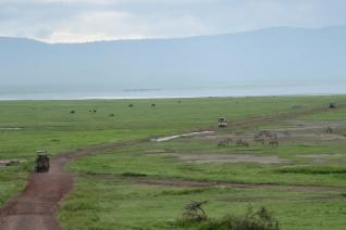 Safari Ngorongoro Crater