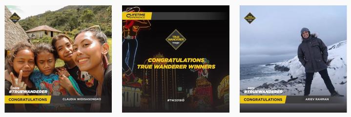 True Wanderer 2019